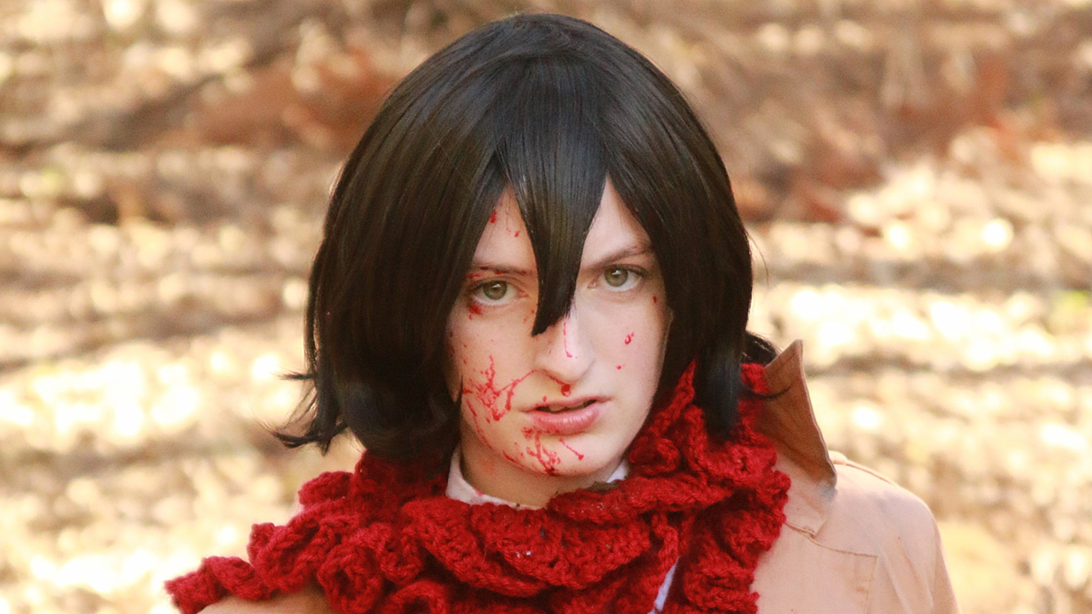 Mikasa Ackerman bloody - Attack on Titan